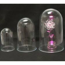 Plastic Dome Case Display Centerpiece Clear 425 6