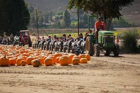 Underwood Farms Pumpkin Patch Hours by 20th Annual Fall Harvest Festival U2013 Creepy La The Los Angeles