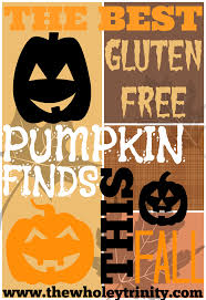 Tazo Pumpkin Spice Chai Latte Nutrition by The Wholey Trinity Gluten Free Feature Friday The Best Gluten