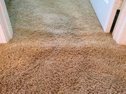 Empire Carpet And Flooring Care by Empire Carpeting Reviews Carpet Vidalondon