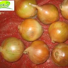 Wholesale And Lowest Price Fresh Red Onion For Sale