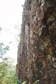 100 Mount Tinbeerwah Travels Climbing Mt Noosa