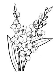 Gladiolus Flower Coloring Pages 9