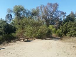 Bonita Pumpkin Patch Sweetwater Road by Sweetwater Regional Park And Nature Trails Timeless Sass3nach