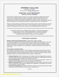 Sample Resume For Experienced Business Development Executive Beautiful Software Developer Template Puter Skills