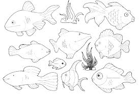 Types Of Small Fish In The Ocean Coloring Pages