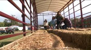 Chesterfield Pumpkin Patch Berry Farm by Why Virginia Hayrides Remain Unregulated Wtvr Com