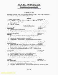 Valid Volunteer Work On Resume Example