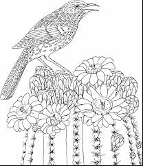 Great Hard Coloring Pages Flowers Adults With Adult Free Printable And