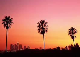 Los Angeles Sunset Palm Trees California