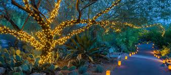 WildLights The Living Desert Zoo And Gardens