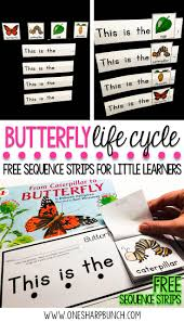 Life Cycle Of A Pumpkin Seed Worksheet by Best 25 Lifecycle Of A Butterfly Ideas On Pinterest Butterfly