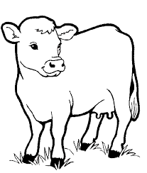 Cow Animal Colouring Pages