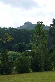 100 Mount Tinbeerwah Wednesday 18 April The Conquest Of When