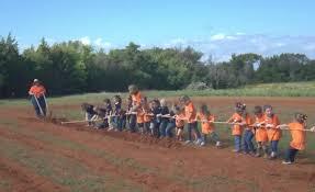 Pumpkin Patch Daycare Fees by Pumpkin Patch Visit Brook Hill Tyler Tx
