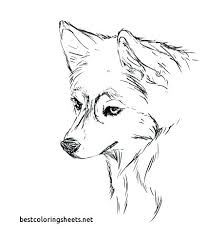 Realistic Husky Coloring Pages Page