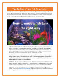 100 Packing A Moving Truck Tips To Move Your Fish Tank Safely By Movingsolutions Issuu