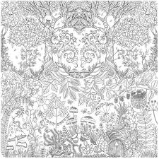Enchanted Forest Foret Enchantee By Johanna Basford L Her First Colouring In Book For Adults Secret Garden Was Sold More Than A Million Copies