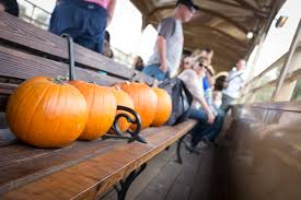 Free Online Books About Pumpkins by Pumpkin Train Sacramento Rivertrain