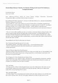 Resume Format Examples 2016 Awesome The Best Template At For Amazing