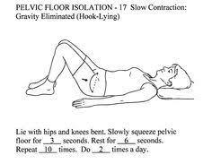 Pelvic Floor Tension Myalgia by Pelvic Floor Isolation001 E1361890353908 Jpg 1780 1386 Health