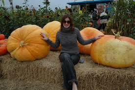 Half Moon Bay Pumpkin Festival Biggest Pumpkin by 10 Crazy Northern California Traditions
