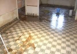cuisine insalubre nettoyage de logements insalubres pro services
