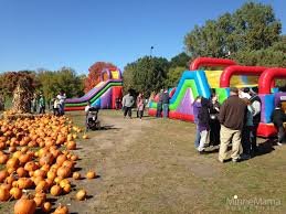 Pumpkin Patch Portland by Malt Tees Mini Golf And Pumpkin Patch Richfield Mn