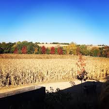 Wenninghoff Pumpkin Patch Omaha by The 25 Best Pumpkin Patch Omaha Ideas On Pinterest Nebraska