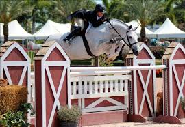 Hunter Jumper Performance   Live To Ride   Pinterest   Hunter ... Autumn Hills Farm Pin By 21 Days Diet Plan On Horses Pinterest Horse Hunter Hunters Jumpers Equitation Equestrian Hillmar Farm Welcome Beckett Run Inc About Us News Alabama Association Corrstone Huntjumper Traing Barn In Modesto And Saratoga Holiday Giving Equestrian Style The Peeps Foundation Is The 744 Best Hunter Jumpershow Jumping Images Florida Jumper Show Barns Med Kennedy Grove Stables Tommi Clark Chosenbrook Show Jumper Sale