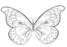 Tiger Swallowtail Butterfly Coloring Page Butterflies Pages Printable