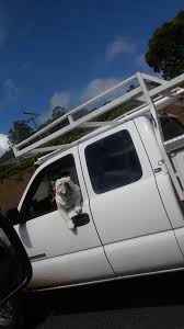 Saw This Bulldog Driving His Truck Down The Freeway : Aww Fmcsa Proposes Reformation Of Commercial Truck Driver Hours Peak La Highway Shuts Down So Food Truck Serves Burritos To Broken Red Stock Image Image Close Chevrolet 52223037 Desoto County Crack On Traffic News Dotimescom Saw This Bulldog Driving His The Freeway Aww Comes Rest Upside After Crash Cliffs Drive St 911 Down Competitors Revenue And Employees Owler Company Tonnage In December Up For 2017 Transport Topics Mercedes Making A Selfdriving Cut Accidents Portable Restroom Septic Vacuum Porta Potty Trucks Truckxpress