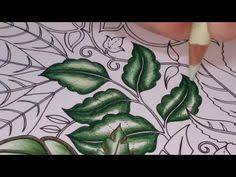 3037e5ad414e5f1a289f21addef0d84b Coloring Enchanted Forest Book Completed