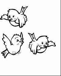 Superb Bird Coloring Pages With Birds And