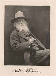 The Wound Dresser Walt Whitman Analysis by 3 Walt Whitman By Cox Sun Walt Whitman Not Disney