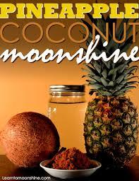 Best Pumpkin Pie Moonshine Recipe by 17 Best Images About Moonshine On Pinterest Cheer Pumpkin Pies