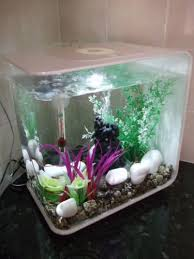biorb bi orb white 15 litre flow fish tank aquarium with