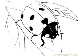 Ladybug Leaf Coloring Page
