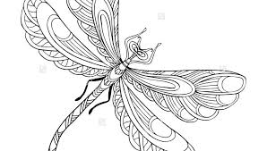 Dragonfly Coloring Page Cute Pages Simple Pictures Mandala Fine Detailed