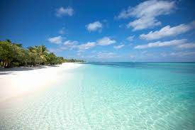100 Maldives Lux Resort LUX South Ari Atoll Fivestar Hotel Ideal For