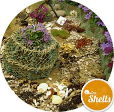 Decorative Lobster Trap Uk by Traditional Lobster Pot Medium Online Shells Buy Sea Shells