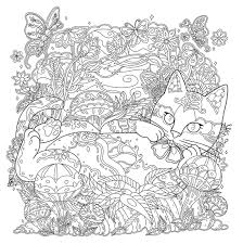 Mystical Cats In Secret Places A Cat Lovers Coloring Book
