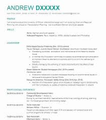 Golf Resume Examples