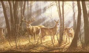 Deer Forest Scene Wallpaper Border