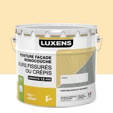 peinture façade murs fissurés luxens 10 l leroy merlin