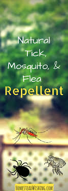 25+ Unique Tick Repellant Ideas On Pinterest | Essential Oil Tick ... How To Kill Fleas And Ticks All Naturally Youtube Keep Away From Your Pet Fixcom Get Rid Of Get Amazoncom Dr Greenpet Natural Flea Tick Prevention Tkicide The Art Getting Ticks In Lawns Teresting Rid Bugs Back Yard Ways Avoid Or Deer Best 25 Mosquito Control Ideas On Pinterest Homemade Mosquito Dogs Fast Way Mole Crickets Treatment Control Guide