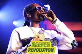 25 Iconic Rap Lyrics About Weed | Billboard Pass Thru Fire The Collected Lyrics Lou Reed 97806816307 Titu Songs Truck Song For Children With Video 25 Iconic Rap About Weed Billboard Best Choice Products 12v Kids Battery Powered Rc Remote Control Nct 127 Color Coded Hanromeng By Motocross Whip Cool Black Business Card Motorcycle Themd In Battle Years Hillsburn Pack 562 Book No2 2000 Christmas Could The Lyrics Be Updated Mighty 790 Kfgo Farmer Brown Had Five Green Apples And Variations Storytime Ukule Sisq Just Explained That Famous Thong Lyric Dumps Like A