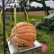 Sarasota Pumpkin Festival Location by Greenthumb Twitter Search