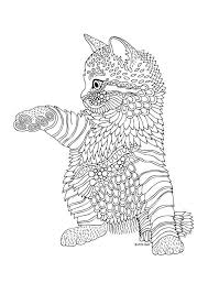 631 Best Adult ColouringCatsDogs Zentangles Images On Pinterest