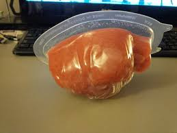 Halloween Jello Molds Brain by Using Gelatin For Moulds And Prosthetics 9 Steps With Pictures